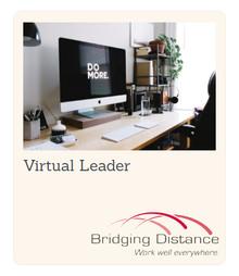 Virtual Leader®