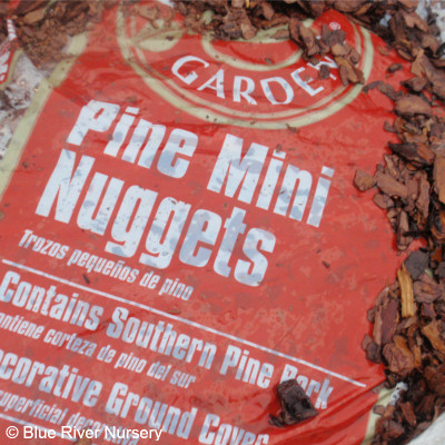 Pine Bark Mini Nuggets
