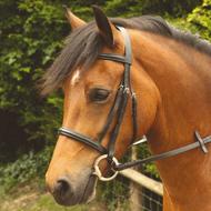 Windsor Plain Leather Bridle
