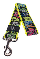Rogz Fancy Dress Extra Extra Large 40mm Special Agent Fixed Dog Lead, Dayglo Floral Design(HL04-BU)