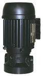 Lafert Motors AU56-460, COOLANT PUMP AU56 018HP PUMP 460V - 3600RPM