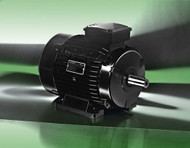 Lafert Motors HPS112-1800-116-460, Permanent Magent Stand Alone 75HP 460V - 1800 RMP