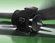 Lafert Motors HPS132-3600-465-460, Permanent Magent Stand Alone 30HP 460V - 3600 RMP