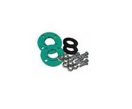 Wilo 2705027, 2 FNPT Cast Iron Flange Kit