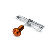 ACI A/100-2W-BBS Temperature RTD's Brass Button Sensor