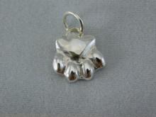 Silver Paw Pendant, Medium
