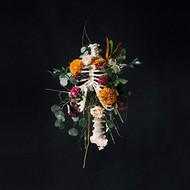 Graves into Gardens CD