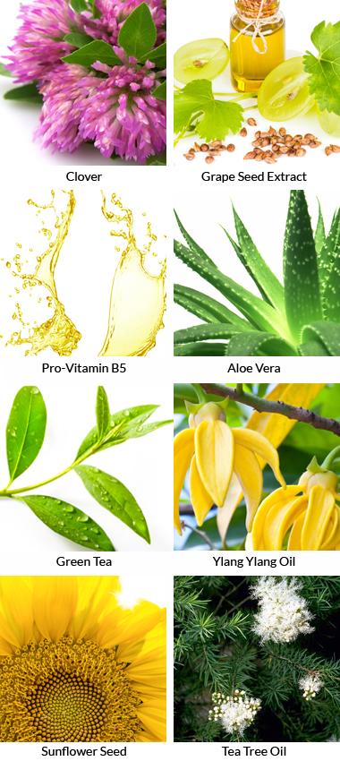 natural skin care pack ingredients