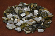 "100 Pcs Black Lip Mother of Pearl Shell Blank Charms 1/4"" - 1/2"""