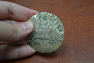 Drilled Hole Round Abalone Shell Blank Disc Coin 50mm