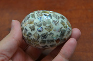 Abalone Mother of Pearl Shell Egg 2 1/2""