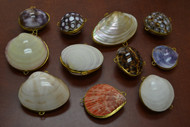 11 Pcs Assort Seashell Storage Trinket Boxes