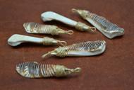 6 Pcs Assort Lambis Shell Tusk With Rope Pendants