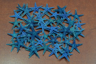 90 Pcs Small Blue Flat Starfish Craft Decoration