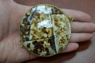 Brown Cowrie Shell Trinket Box