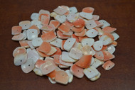 100 Pcs Pink Conch Concho Shell Charms