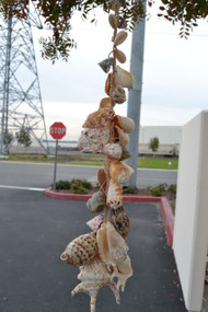 Assort Mix Seashell Wired Garden Wall Hanger 26""