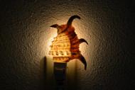 Lambis Rugosa Spider Conch Shell Nightlight
