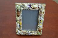 Handmade Assort Mix Seashell Photo Frame