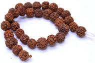 34 Pcs Prayer Rudraksha Rudraksh Japa Mala Rosary Beads