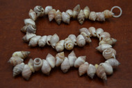 50 Pcs Small Purple Frog Seashell Beads Strand