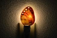 Polished Red Abalone Seashell Nightlight