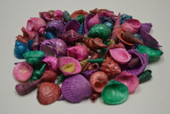 Assorted Dyed Multi Colored Mixed Seashells