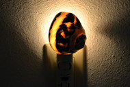 Black Cyprea Banded Pica Turbo Shell Nightlight