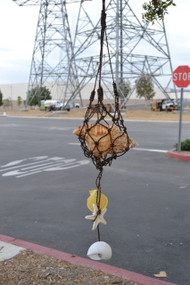 Big Frog Nautical Seashell Twine Windchime