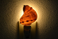 Brown Rapa Whelk Shell Nightlight
