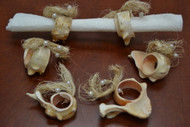 Carved Pink Murex Shell Napkin Rings