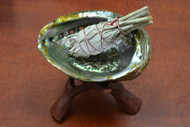 "Abalone Kit - 5"" Shell with 6"" Wood Stand and 3"" Sage"
