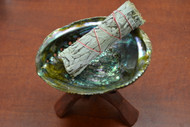 "Abalone Kit - 5"" Shell with 6"" Wood Stand and 4"" Sage"