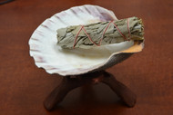 "Lion Paw Kit - 5"" Shell with 6"" Wood Stand and 4"" Sage"