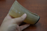 Honey Buffalo Horn Medieval Drinking Ale Cup 5""