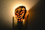 South Africa Sarmaticus Turbo Shell Nightlight