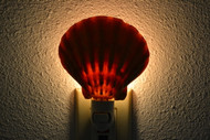 Orange Lion Paw Shell Nightlight