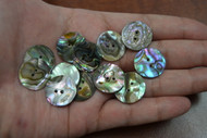 Abalone Shell Sewing Round Buttons 20mm