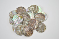12 Pcs Round Abalone Shell Charm Pendants 30mm