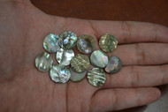 12 Pcs Round Abalone Shell Blank Disc Coin 12mm