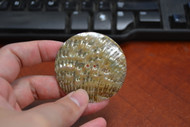 Abalone Shell Sewing Round Buttons 55mm