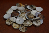 50 Pcs Cowrie Shell 2 Holes Sewing Buttons 20mm