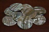 12 Pcs Round Abalone Shell Charm Pendants 35mm