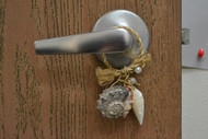 Assort Seashell Hanger Door Bottle Beach Decor