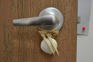Assort White Seashell Hanger Door Bottle Beach Decor