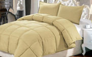 Southern Moss Down Alternative Comforter 3 Piece Set