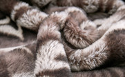 Tip Dyed Faux Fur Throw, Pillow Shells, and Ottoman 4 Piece Set