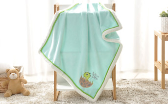 Little Dino Embroidered Flannel Baby Blanket