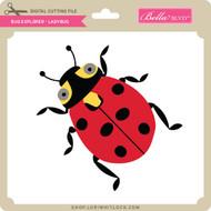 Bug Explorer - Ladybug