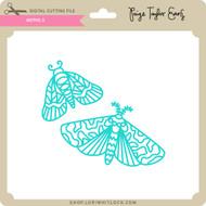 Moths 3